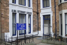 Alma Veterinary Surgery