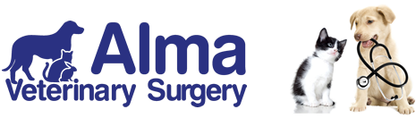 Alma Veterinary Surgery Vets in Scarborough
